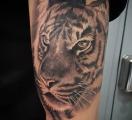 Daniel-Macias-Carbon-Ink-Tattoo-18