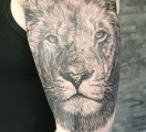 gry Siri Berg Sabelink Tattoo 071