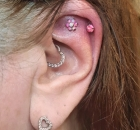 Christina Colour Piercing Carbon Ink Tattoo 087 helix-1-01