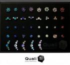 Piercing-QualiTi-jewlery-Carbon-INK-Tattoo-Brumunddal-Flowers-and-clusters-nettside